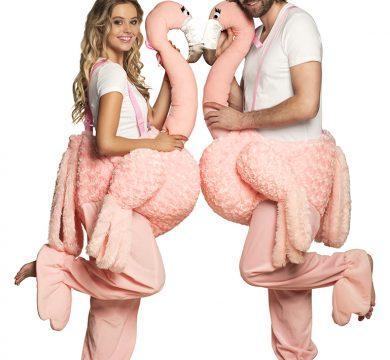 costume carnevale coppia fenicotteri