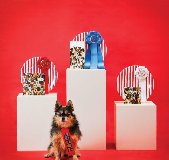 Piatti cani Collezione Premium ELISE