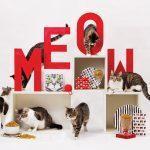 Collezione Premium ELISE gatti
