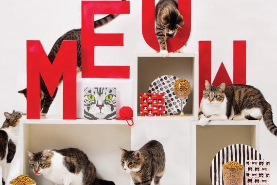 dettaglio gatti articoli feste tema cani e gatti