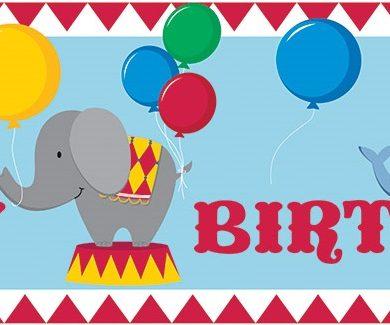 festone compleanno tema circo