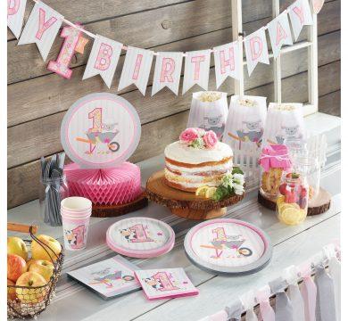articoli festa 1° compleanno bambina